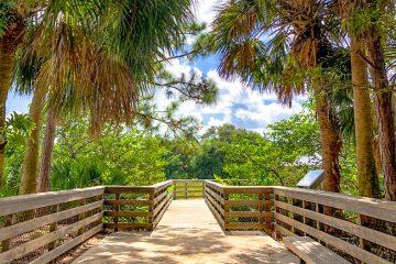 Orlando Natural Springs | Hiking Trails | Wildlife